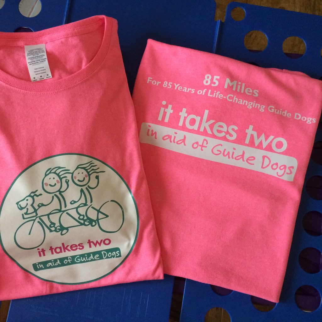 it takes two - Guide Dogs design